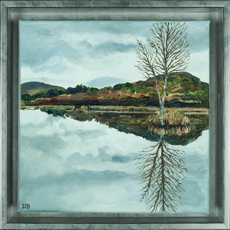 lily_tarn_reflections@0,5x